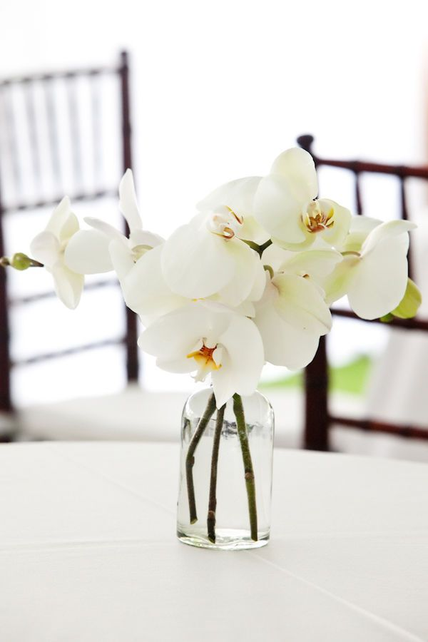 style me pretty - real wedding - usa - florida - rosemary beach wedding - reception decor - table decor - centerpiece - phalaenopsis orchids