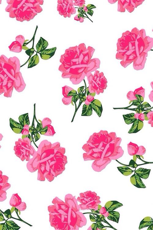 144 best images about wallpapers on pinterest neon - Pink rose wallpaper iphone ...