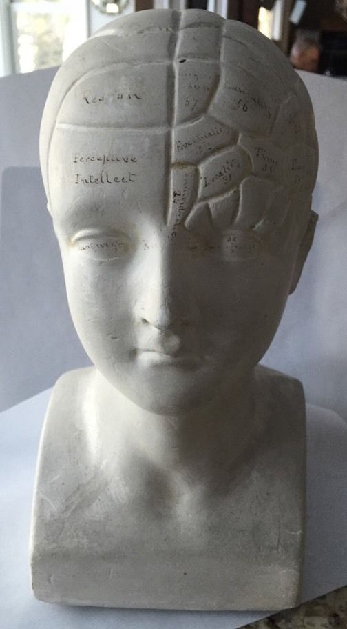 RARE Antique Plaster L N Fowler Phrenology Head Handwritten Details in Ink | eBay