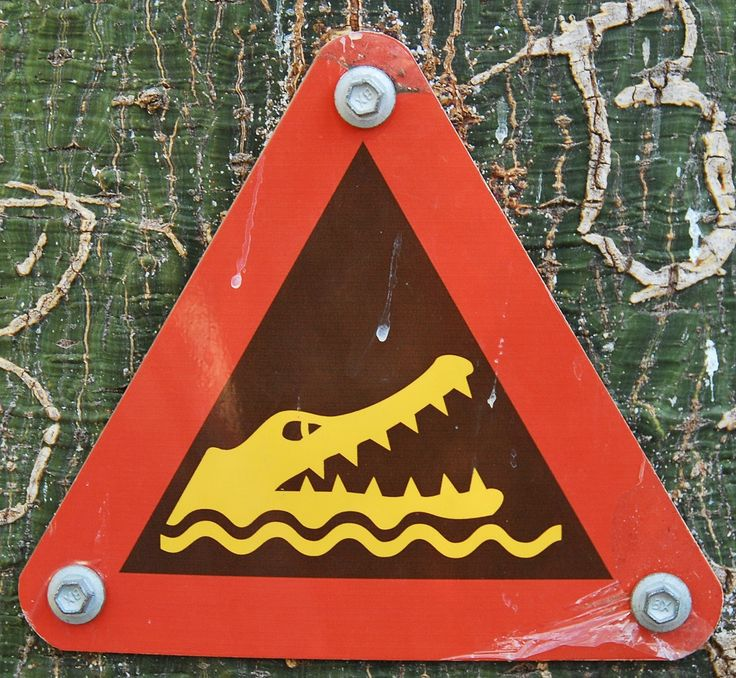 Saltwater Crocodiles - Warning Sign | The Travel Tart Blog