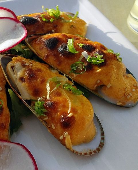 The 25+ best Baked mussels ideas on Pinterest | Baked ...