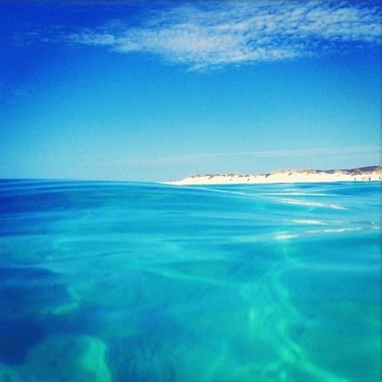 Ningaloo Blue  #WesternAustralia
