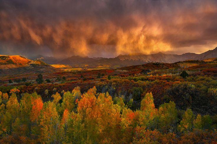 1. Un paysage à nous couper le souffle et un lac paisible en bordure de forêt avec une superbe brume d