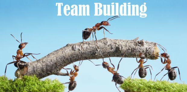 Pentingnya Membangun Tim Dalam Bisnis   Portal Pengusaha