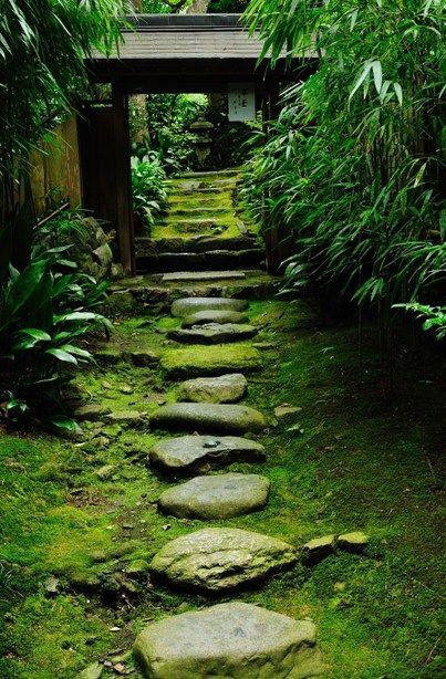 苔の石段 京都東山, Japan