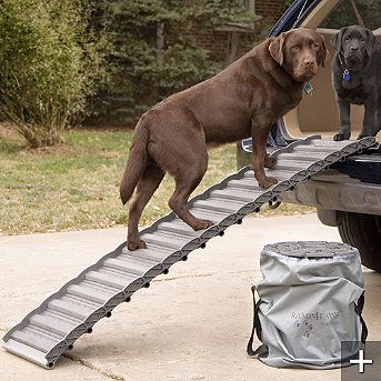 Roll Up Dog Ramp
