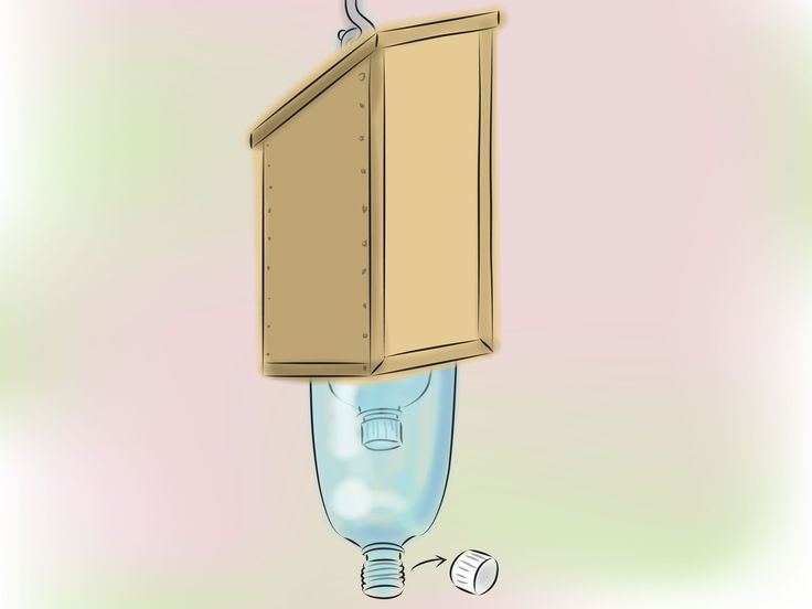 Build A Carpenter Bee Trap