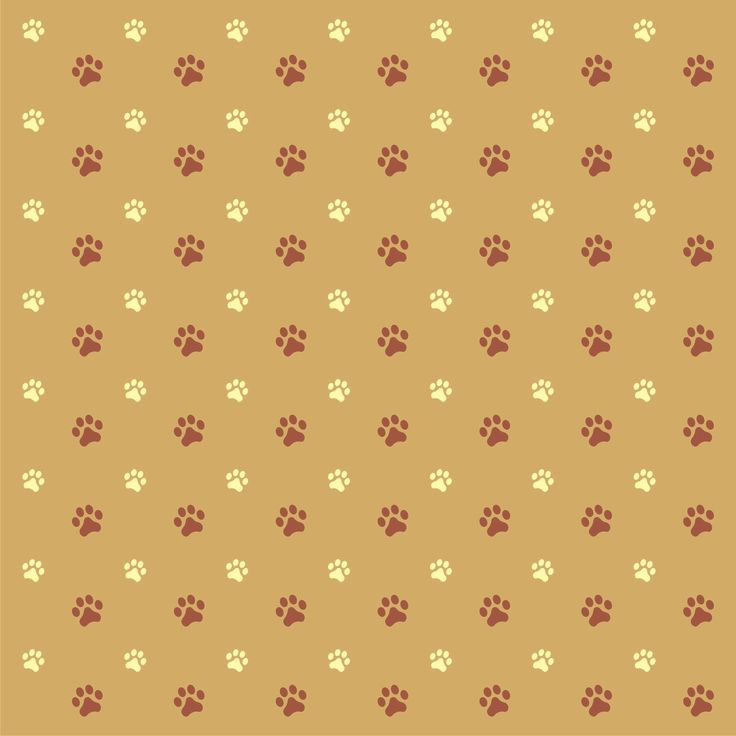 Cute Pet Animals Hd Wallpapers Free Paw Print Background Paw Print Background Paper