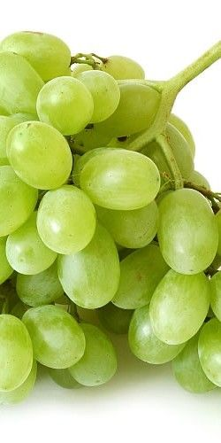 A Bunch of Fresh Green Grapes ....
