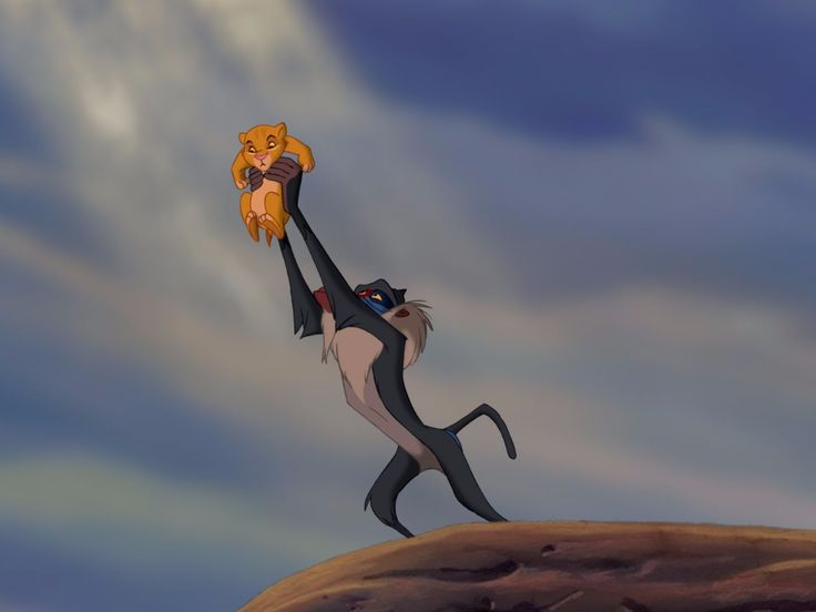 """Disney showed a shot-for-shot recreation of the opening from 'The Lion King' live-action movie and fans went nuts - Disney is revealing info and footage for many of its live-action movies to fans at its D23 Expo Saturday, and one of the biggest reveals was for the upcoming live-action version of """"The Lion King.""""  The studio showed off a shot-for-shot recreation of the beloved animated classic's opening scene featuring the song, """"The Circle of Life."""" You know, the scene where all of the…"""