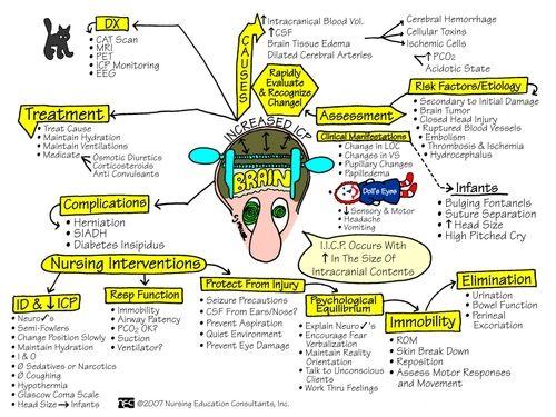 nursing care of increased intracranial pressure