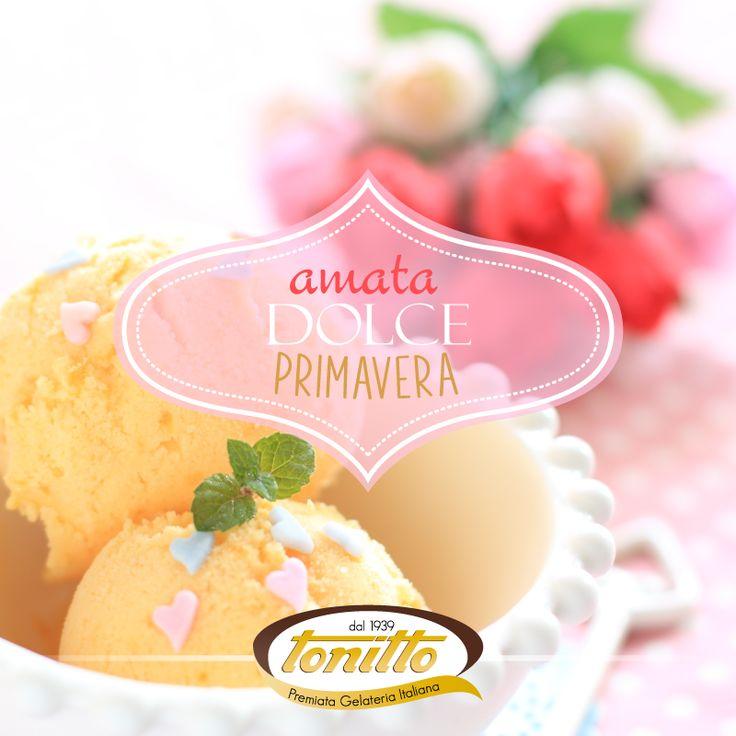 amata dolce primavera by Tonitto