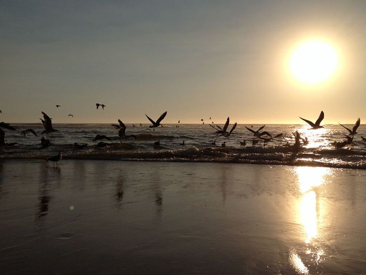 Praia da Vieira, sinónimo de paz