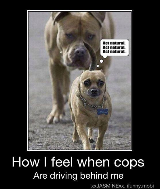 Even when I'm NOT speeding!