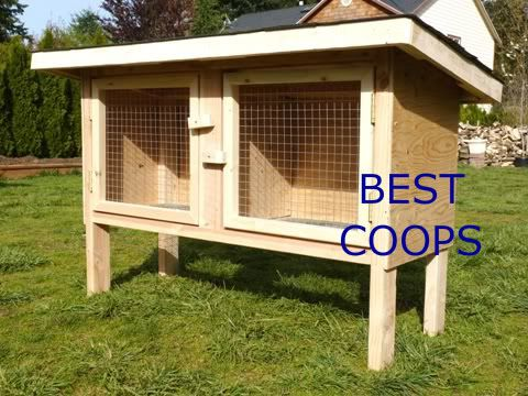 Outdoor Double Rabbit Hutch Plans