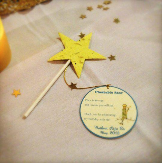 Best Kids Parties: Le Petit Prince: plantable star favors