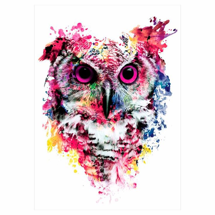 1 sheet colorful drawing temporary tattoo women men body art catoon owl decal design km