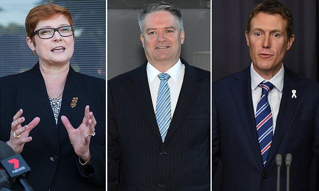 Federal Minister for Defence Marise Payne booked VIP flights for 16 passengers, including staff and a dozen MPs, costing taxpayers $2,223 for each one-way ticket to Perth.