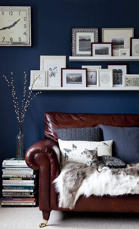 Beautiful Inky Blue Walls In This Living Room With Lots Of Picture Frames On Shelves