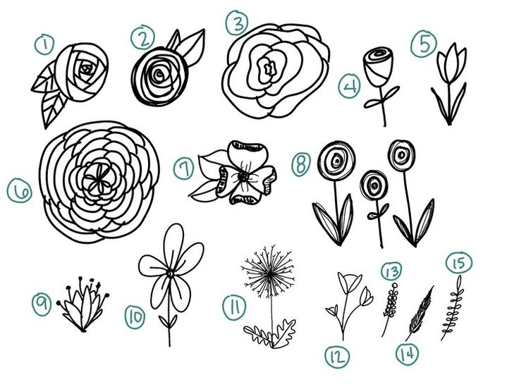 Best 25 doodle flowers ideas on pinterest doodle ideas for How to draw the flower of life step by step
