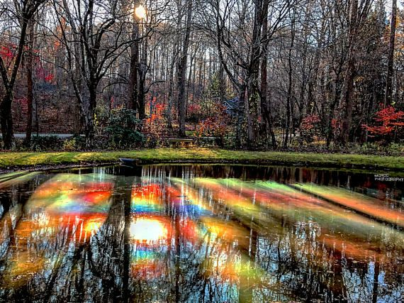Fall In Reflection This Image Mixes A Graphic Element With Brilliant Colors And Captures The Eye Fall Photography Nature Autumn Scenery Landscape Photography