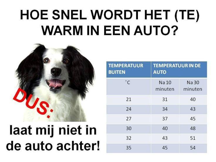 Ieder jaar is het wel eens warm in Nederland. En ieder jaar komen er weer verhalen voorbij van opgesloten honden in auto's. Blijkbaar wordt er niet genoeg voor gewaarschuwd... Nee, die ruim 30