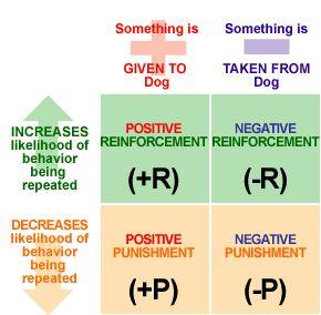 Positive Reinforcement vs. Negative Reinforcement