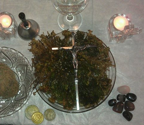 Ritual rosa de jericó