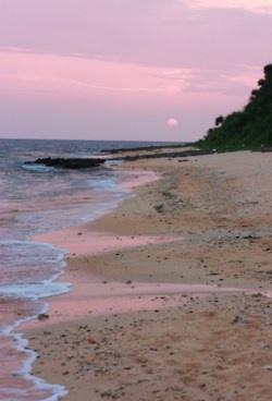 °jpn°  sunrise on Hoshizuna (Star Sand) Beach in Iriomote (R)