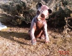 Little Bear Statue