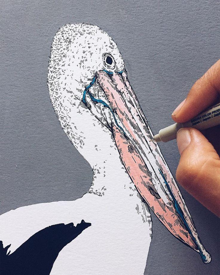 Pelícano 〰 #drawing #artwork #illustration #instaart #acrylicpainting #ilustradora #spain #zaragoza #ericaconc #workinprogress #pelicano #sunday #ilustracion #ink