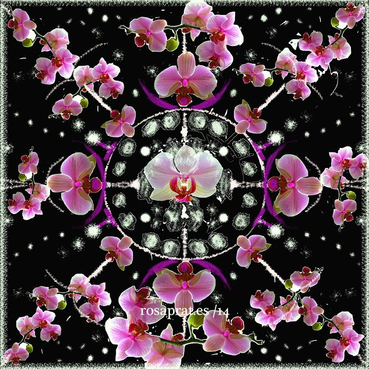 Mandala de orquideas. composición sobre fotos.