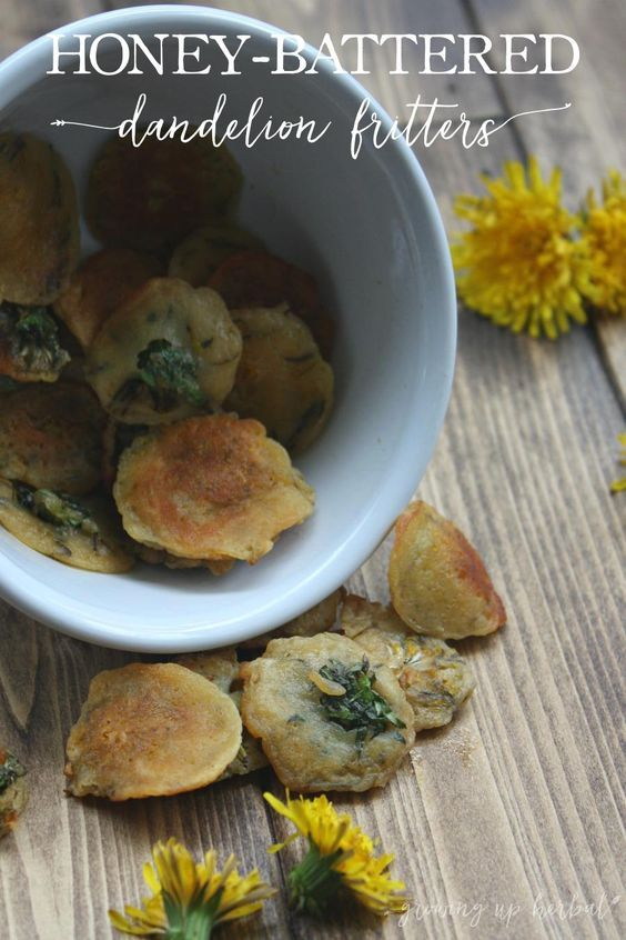 Honey Battered Dandelion Fritters Recipe Dandelion Recipes Food Recipes Food