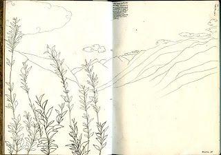 Rice Paper Tree: Journal