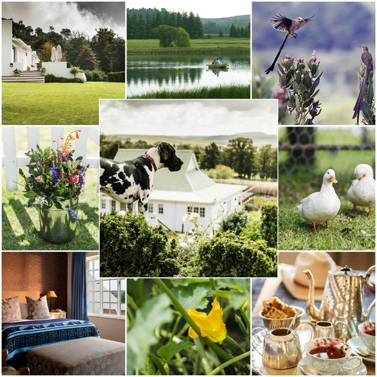 #HeritageDay is nearly here! Spend the long weekend in the #Drakensberg and watch Oaklands' countryside #spring to life.