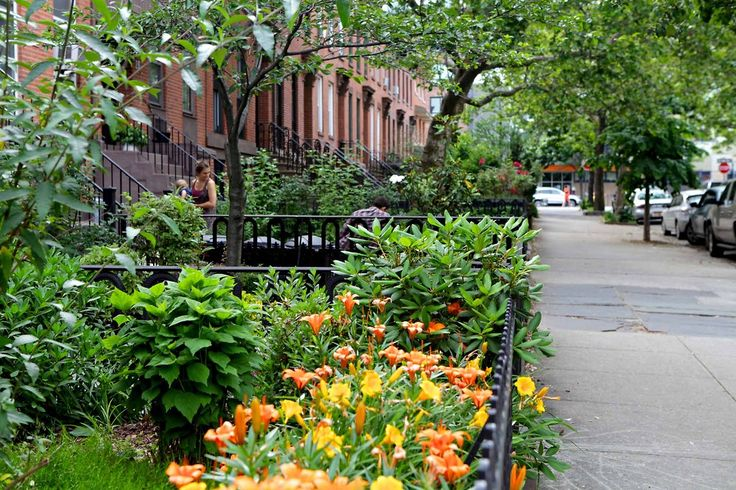 24 Best Images About Our Brooklyn On Pinterest Gardens