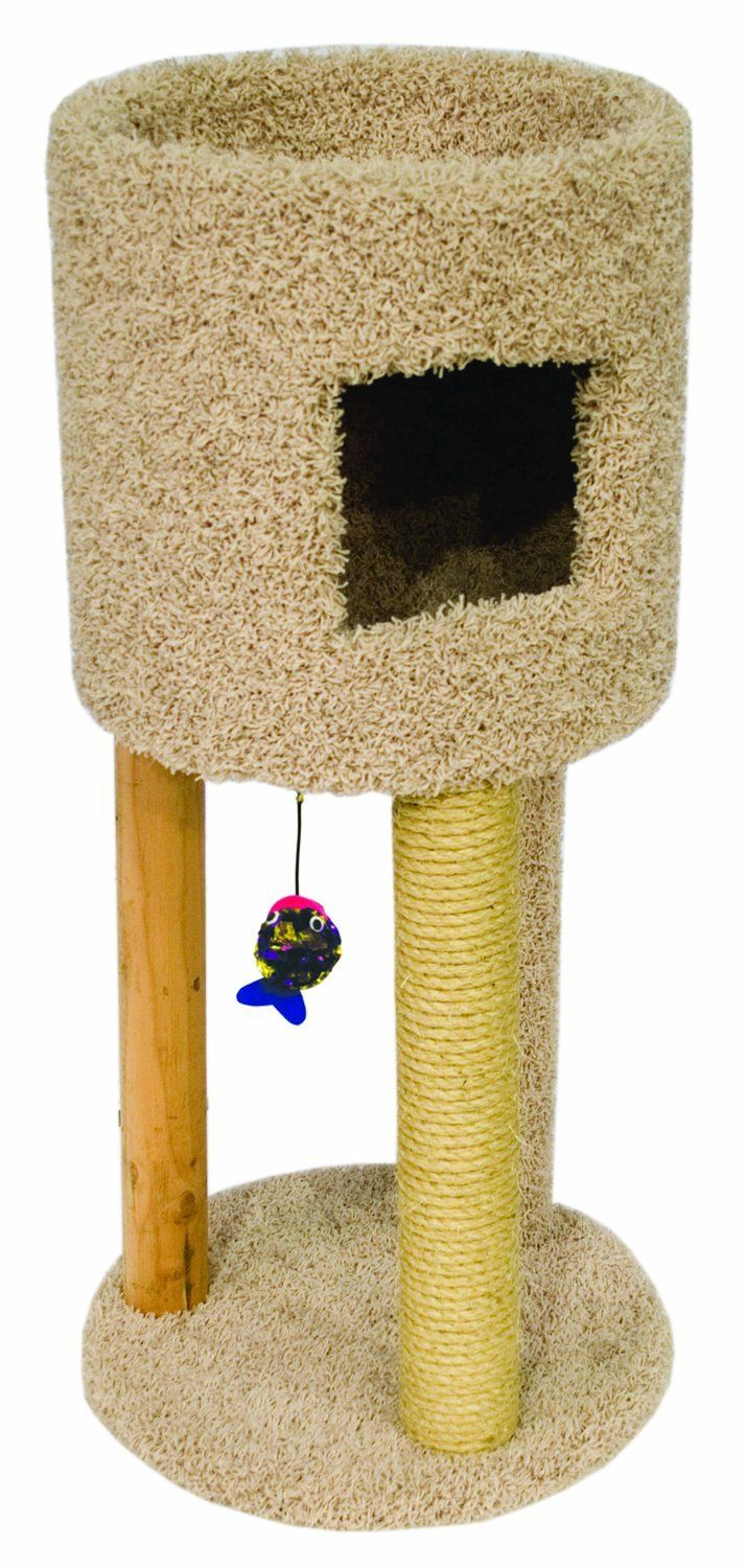 Ware Kitty Condo W Playground * More infor at the link of image  : Cat Tree and Tower