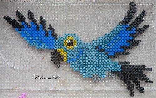 Perles à repasser : Perroquet