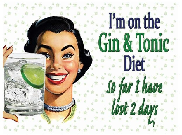 Image result for Gin makes you sin