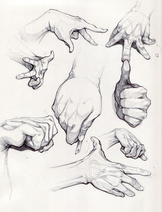 """Today's Drawing Class """"How to Draw Hands: Hands look complicated to draw but learn a few little tricks and you'll be drawing like the Masters ✤ 