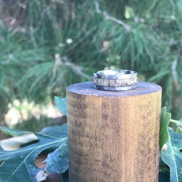 The birds and native wildlife were assisting in our product videos today 😂 but seriously, here is some info on one of our most popular rings- the hammered edge antler ring! Check it out on our website at www.antlerrings.com . . . . . #antlertribe #archery #ring #antlerring #weddingring #bowhunter #hunter #jewelry #doveseason #outdoorsman #nature