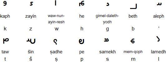 Book Pahlavi script
