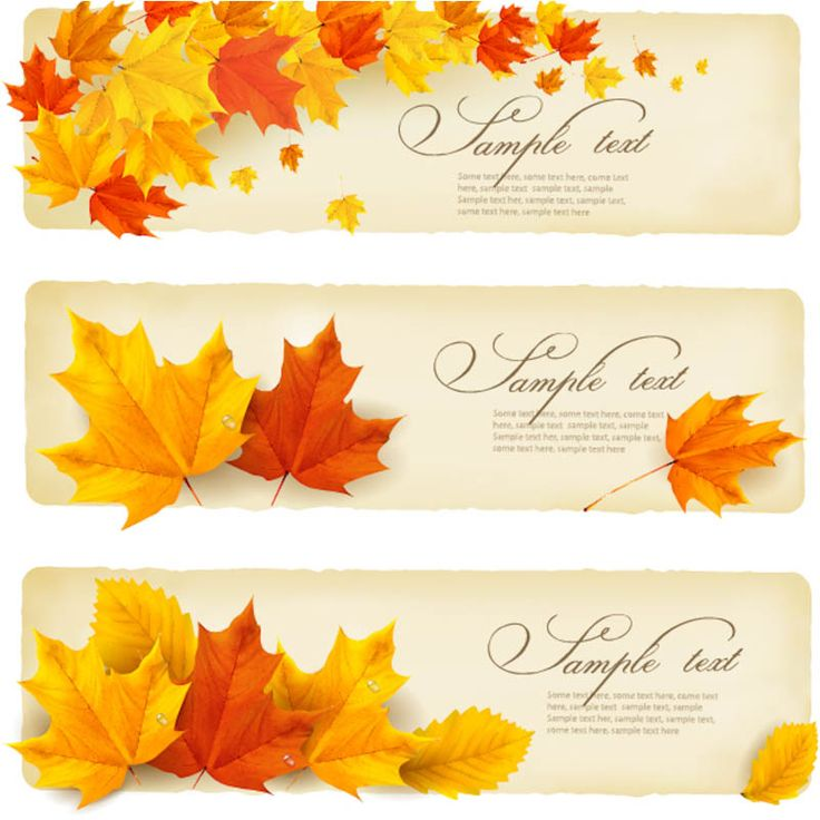 25+ best vector autumn images by Liene Vernere on ...