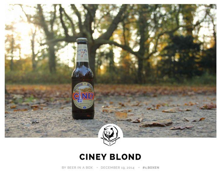 Ciney Blond van Alken Maes Groep
