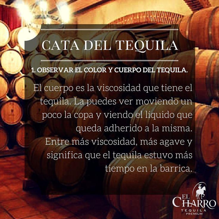 Cómo catar el tequila? #Tequila #Cata #Observar