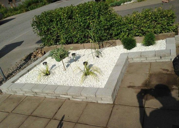 Les 25 meilleures id es de la cat gorie arbre fruitier nain sur pinterest nature verte plante - Petit jardin cosmetic solution villeurbanne ...