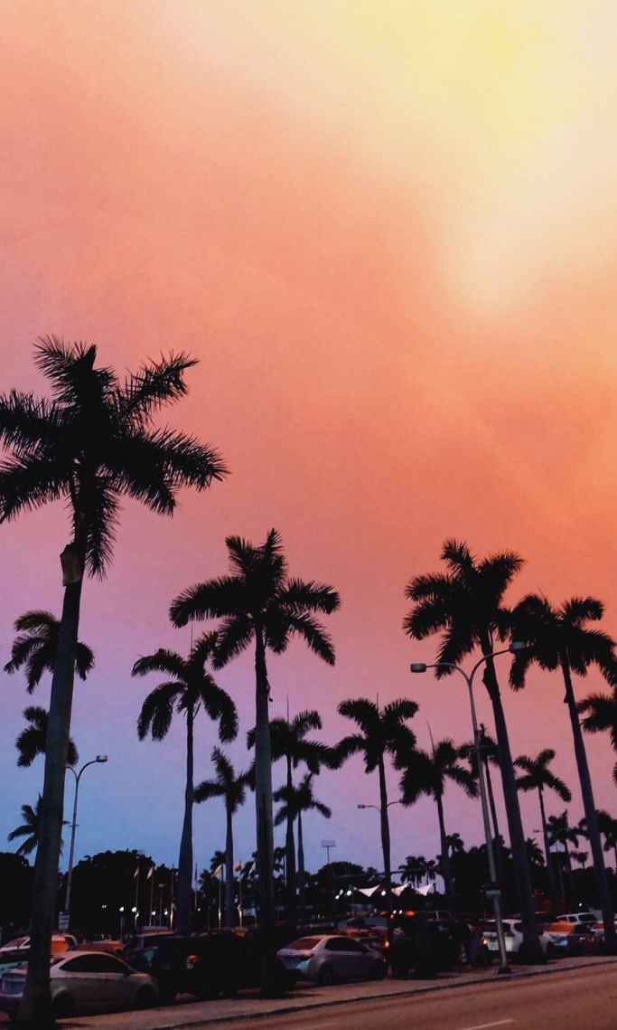 Sunset Vsco Beach Pictures Photography Rainbow Miami Beach Pictures Wallpaper Vsco Pictures Artsy Beach Pictures
