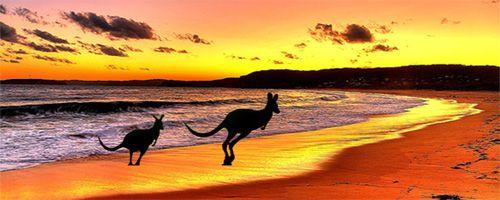 AUSTRALIA, THE LAND OF THE KANGAROO. / AUSTRALIA, LA TIERRA DE LOS CANGUROS.