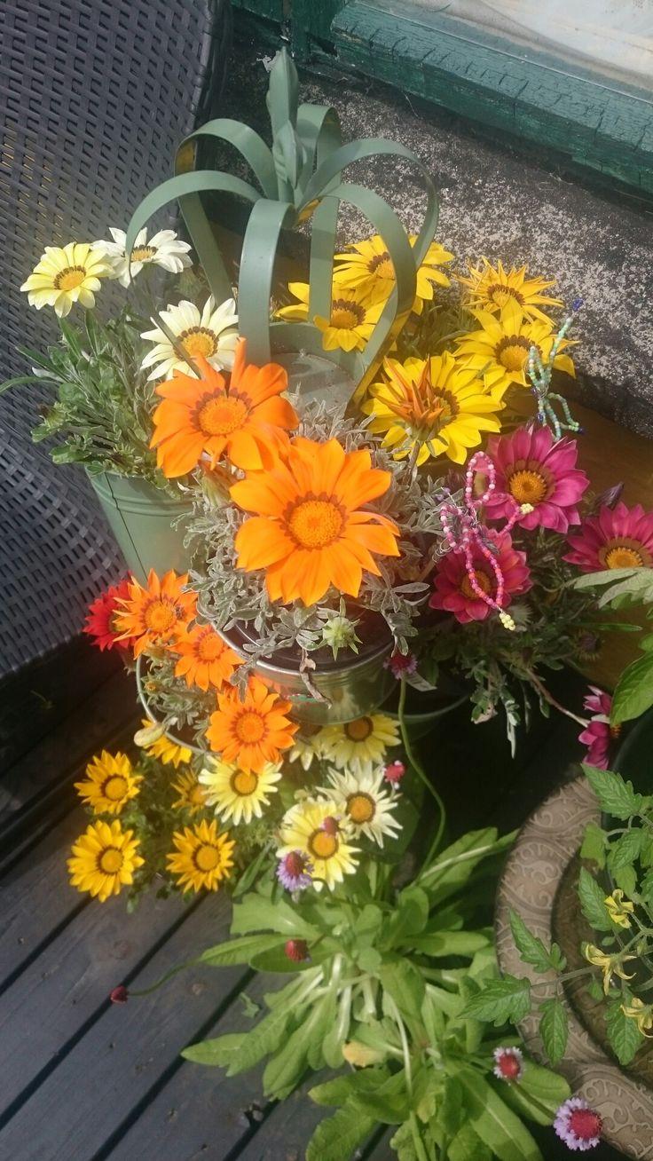 Mine smukke blomster