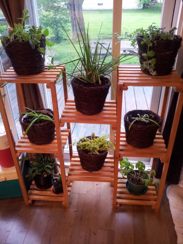 13 Best Images About Plant Shelf On Pinterest See More